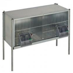Cage de Mue pour Pigeons