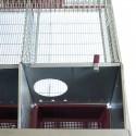 Techo para Boxes de Perros