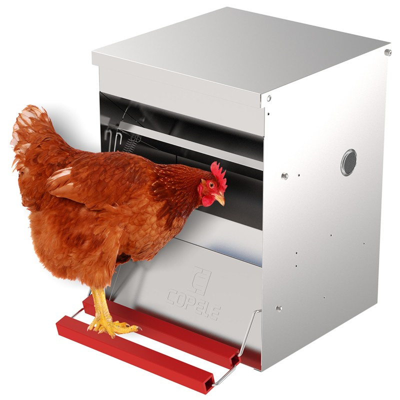 """""""Safeed"""" Automatic Poultry Feeder"""