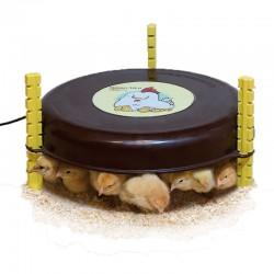 Calefactor para pollitos...