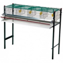 Battery Cages for Quails