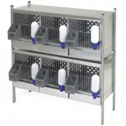 Partridges Cage with 3 Dpts.