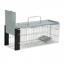 Cage Pour Rats