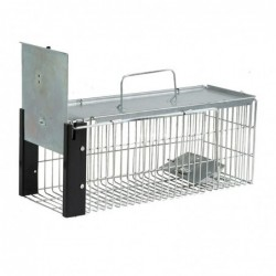 Rats Cage