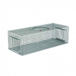 Cage de Capture de Pigeons