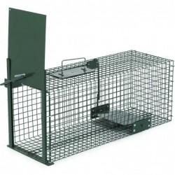 Cage Piege De Lapins Peint