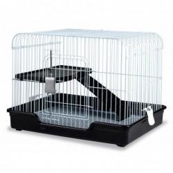 Cage Mascottes Nº5