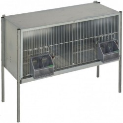 Moulting Cage for Pigeons