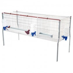Cage for Broilers