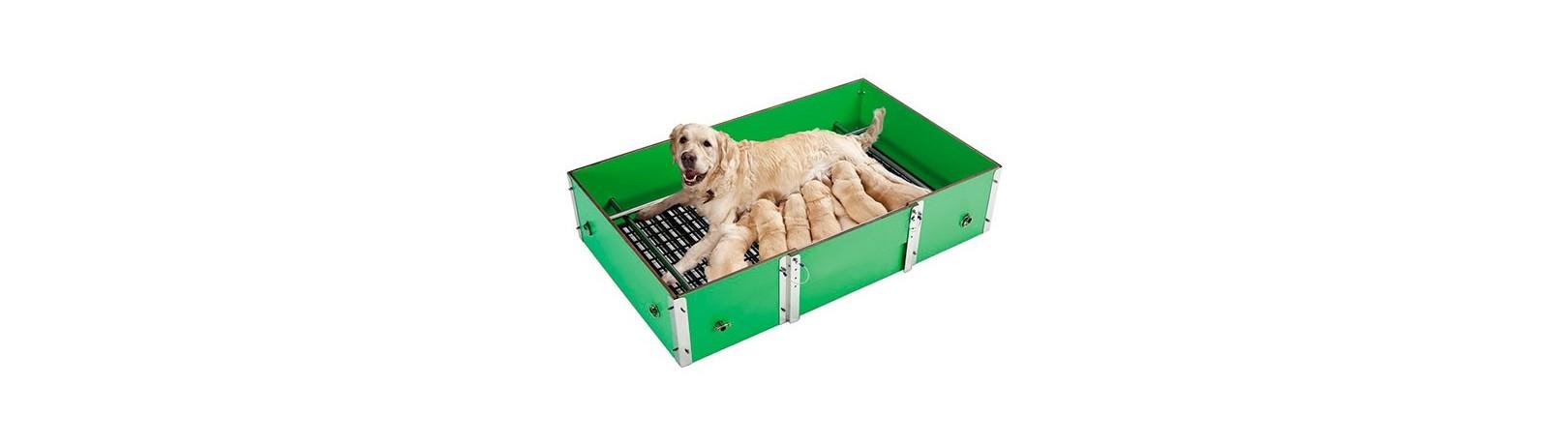 Fabricant de cages de parturition pour chiens