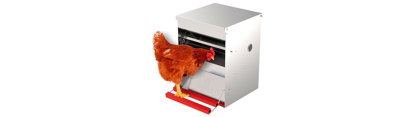 Fabricante Tolvas y Comederos para Aves - Comederos para gallinas
