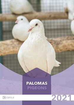 Palomas PDF